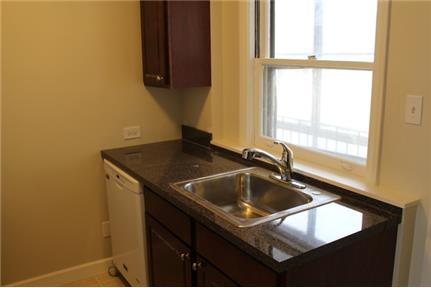Deluxe 1BR/1BTH Apartment in Sauganash