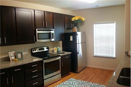 1 bedroom Apartment in Hampton City