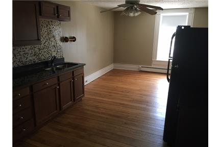 Awesome 1 bedroom totally remodeled- walking distance from UWRF