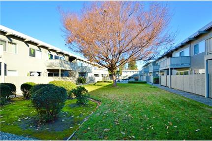 Lovely Fremont, 2 bed, 1 bath. Parking Available!