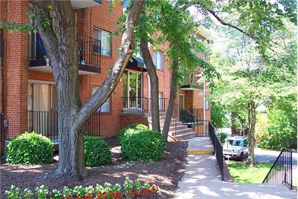 1 bedroom Apartment - Not only do we include utilities in your rent. Pet OK! - But we also include our world-class service and desire to take care of the you live