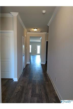 Beautiful, Brand New Rental Home!! for rent in New Market, AL